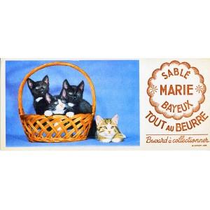 buvard-panier-de-chatons