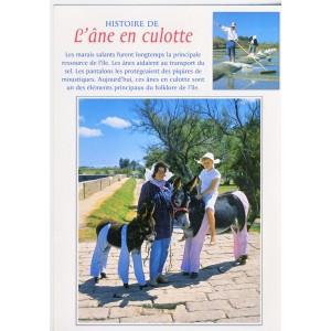 CARTE POSTALE HISTOIRE DE  L'ANE EN CULOTTE
