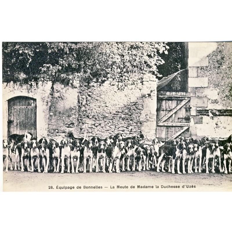 CARTE POSTALE CHASSE - EQUIPAGE DE BONNELLES - LA MEUTE