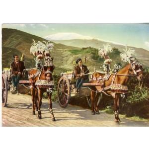 CARTE POSTALE CHEVAUX - CHARETTES SICILIENNES