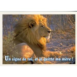 CARTE POSTALE LION - UN SIGNE DE TOI