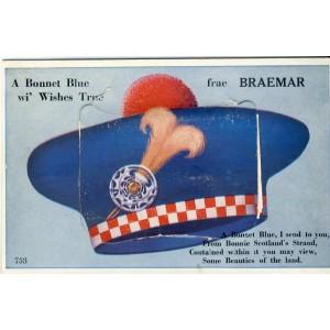 CARTE A SYSTEME A BONNET BLUE - BONNET DE MARIN