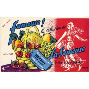 BUVARD FAMEUSE LA SEMEUSE -  FRUITS CARPENTRAS