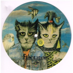 CARTE-DISQUE 45 TOURS - FELICITATIONS, PICTURE-DISC AVEC CHATS HUMANISES