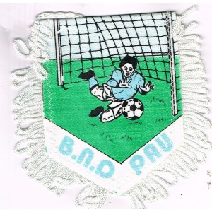 FANION FOOTBALL B.N.D. PAU - BLEUTS NOTRE DAME
