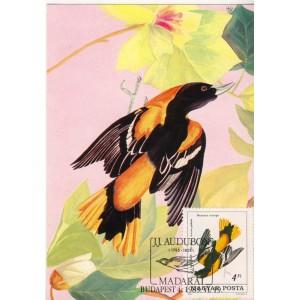 oiseaux-d-audubon-carte-maximum-de-hongrie